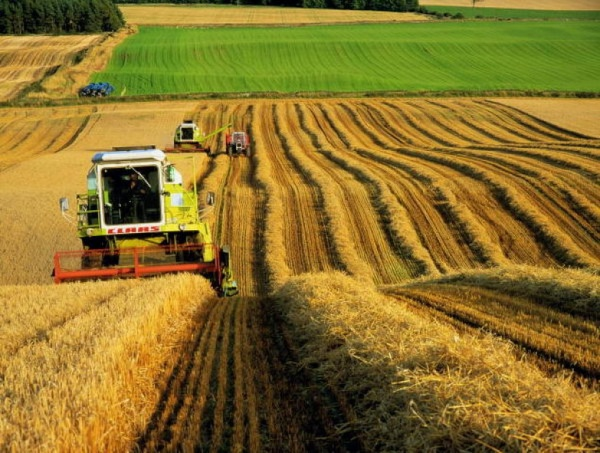 Agricultural subsidy system can be changed