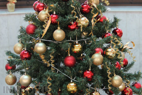 No Live Christmas Trees this Year in Nizhny Novgorod
